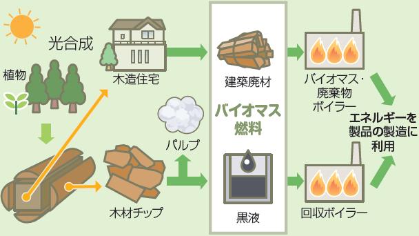 日本製紙グループのバイオマスエネルギーの利用形態