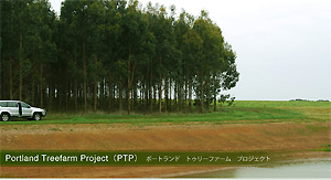 Portland Treefarm Project(PTP)ポートランド トゥリーファーム プロジェクト