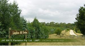 JAF MATE Plantation Pty.Ltd.(JMP)ジャフメイト プランテーション