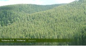 Volterra S.A. (Volterra)ヴォルテラ