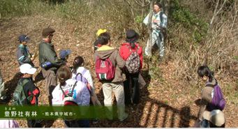 豊野社有林‐熊本県宇城市‐