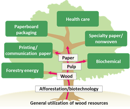 General utilization of wood resources