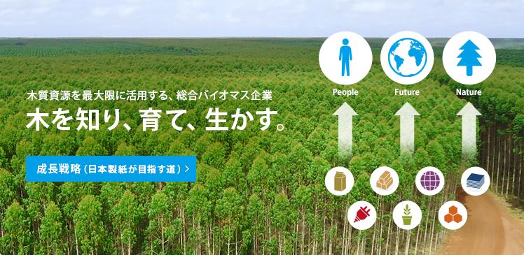 木質資源を最大限に活用する、総合バイオマス企業 木を知り、育て、生かす。 成長戦略(日本製紙が目指す道)