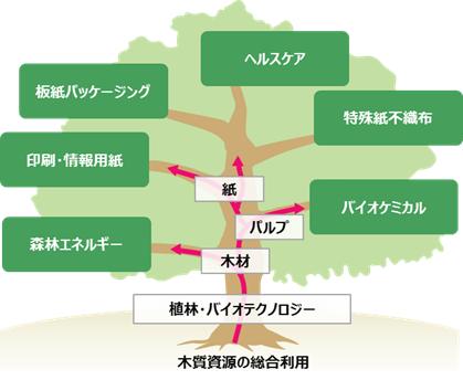 木質資源の総合利用 General utilization of wood resources