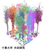 3Dレーザースキャナによる測樹法開発